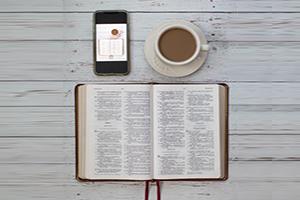 Weekly Bible Studies